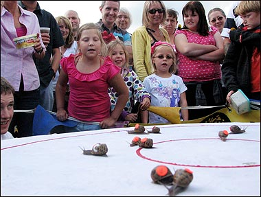 1 World Snail Racing Championships
