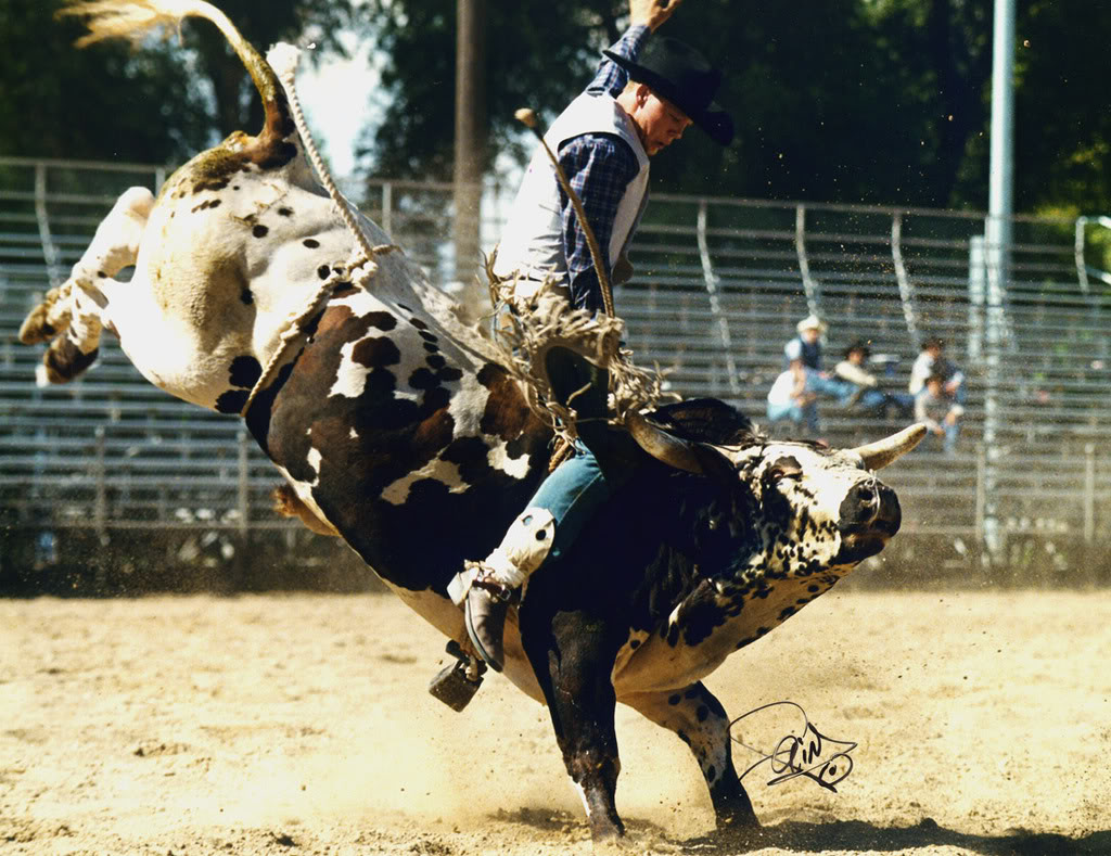 bull riding13 Little Boy Dreams About Pro Bull Rider