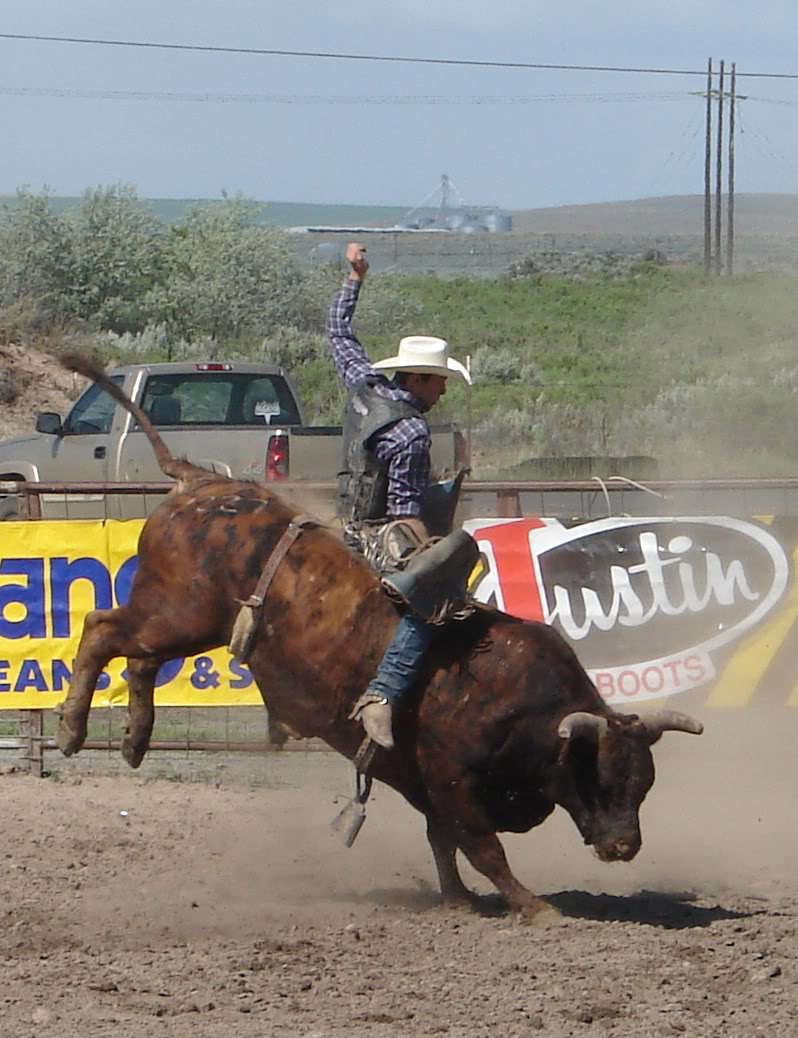 bull riding17 Little Boy Dreams About Pro Bull Rider