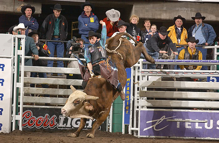 bull riding9 Little Boy Dreams About Pro Bull Rider