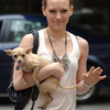 Female Celebrities and Their Dogs