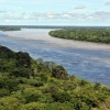 Top Facts about Amazon Rainforest