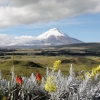 Tour to the Cotopaxi Volcano, Ecuador