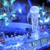 Christmas window displays in Paris