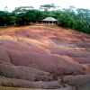 The Seven-coloured earth of Chamarel, Mauritius