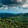 El Yunque Rain Forest in Puerto Rico