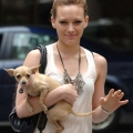 Female Celebrities and Their Dog...