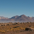 The Atacama Desert – One o...