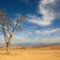 Drakensberg Park – South A...