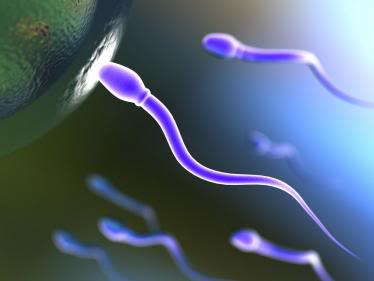 sperm motility7 Get Pregnant of Partners Lazy Sperm