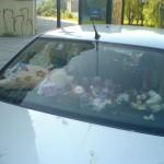 really girlish car 03 150x150 Really Girlish Car