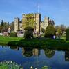 Tulip Festival  at Hever Castle, Kent