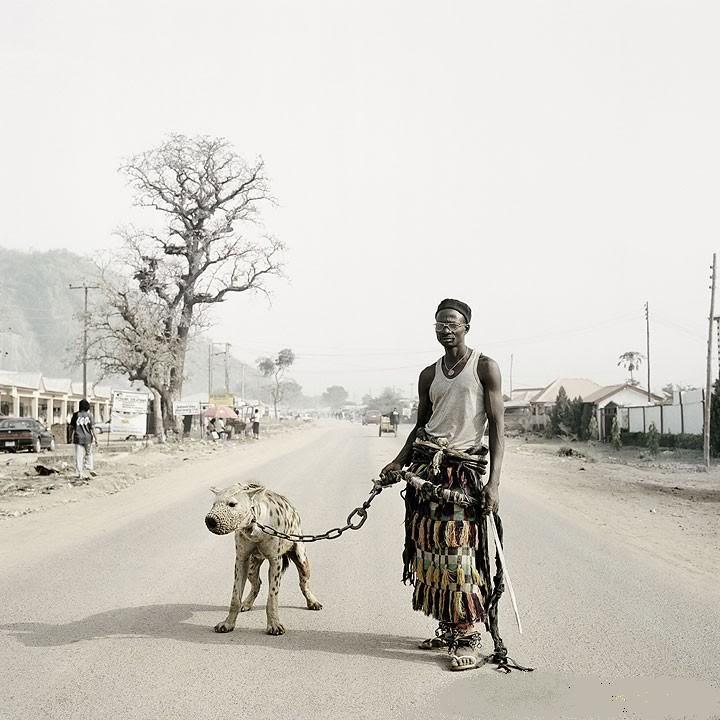 hyena4 The Nigerian Hyena Men   Do You Want a Good GuardDog ?