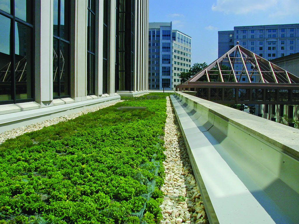 green roof1 Innovative Green Roofs for Healthy Cities