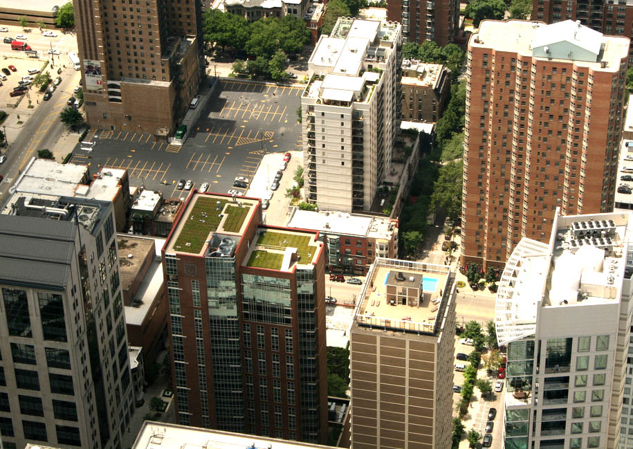 green roof10 Innovative Green Roofs for Healthy Cities