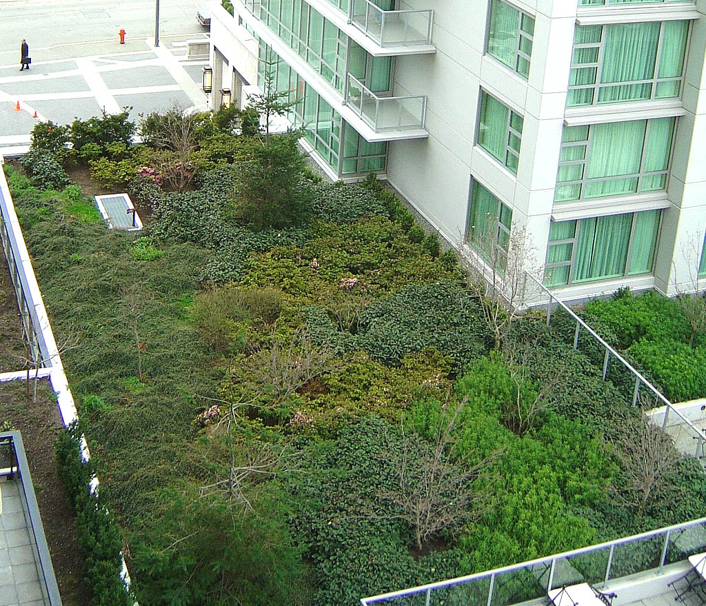 green roof8 Innovative Green Roofs for Healthy Cities