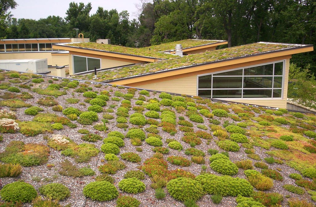 green roof9 Innovative Green Roofs for Healthy Cities