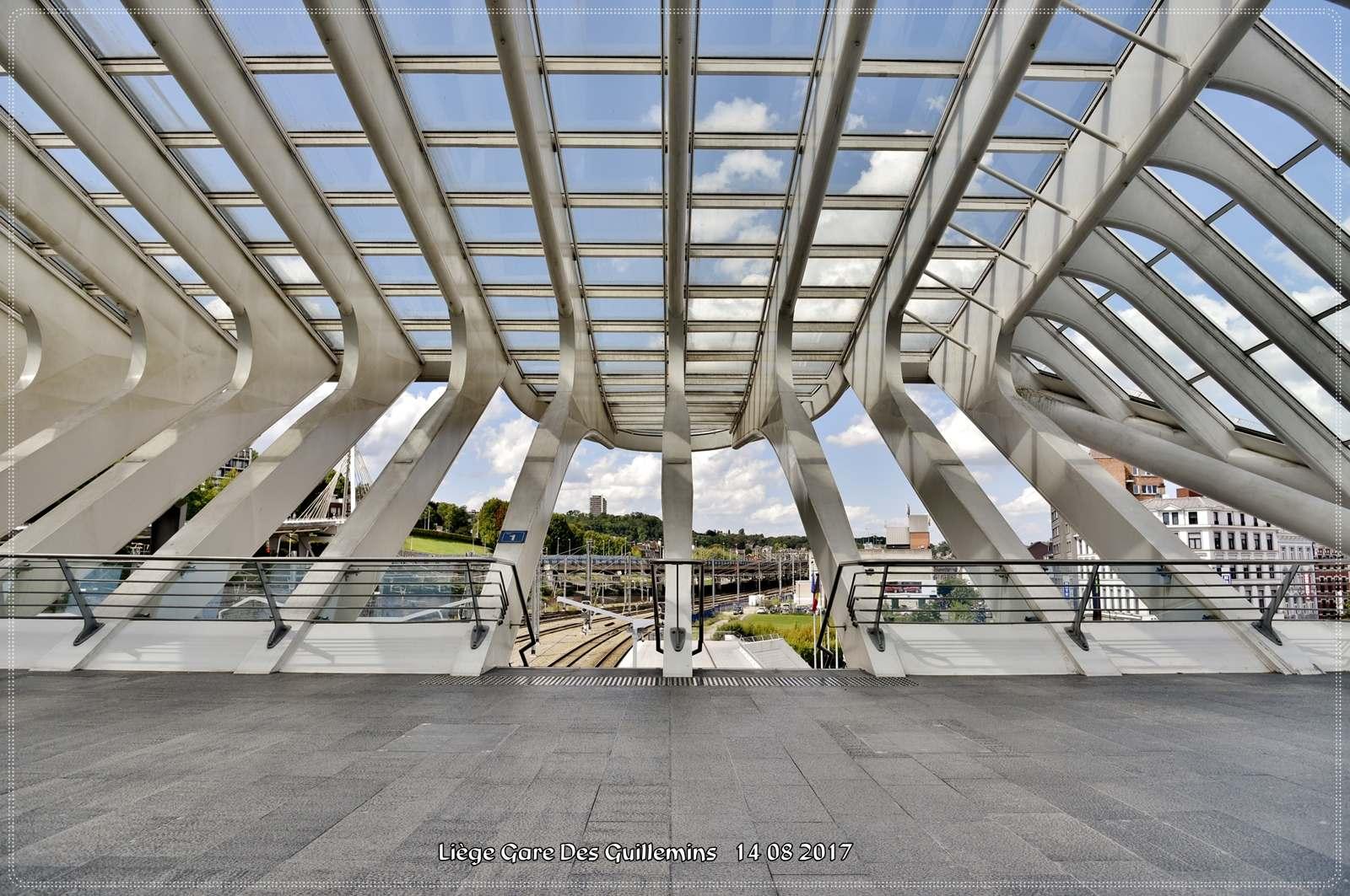 gare des guillemins2 Liege Guillemins Railway Station by Santiago Calatrava