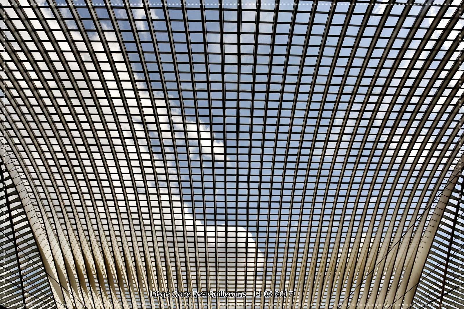 gare des guillemins3 Liege Guillemins Railway Station by Santiago Calatrava