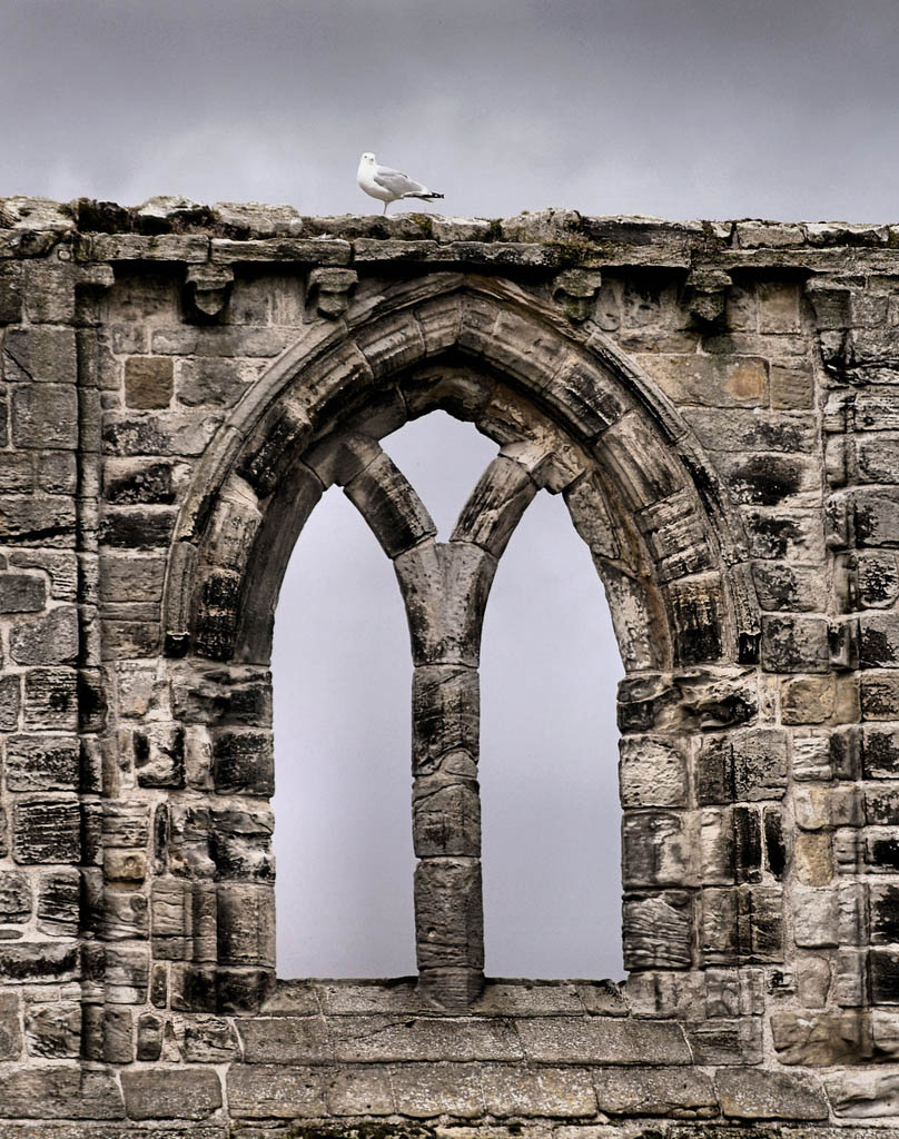saint andrew scotland7 Saint Andrews Cathedral Ruins   Place to See in Scotland