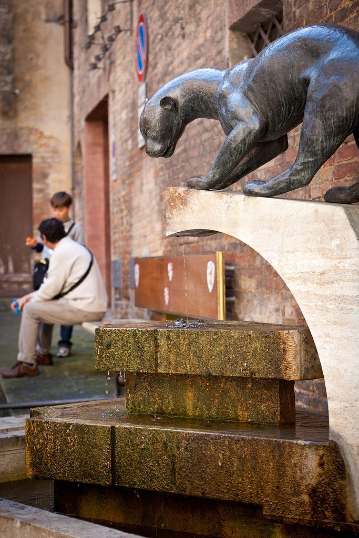 siena italy11 Siena Trip   Beauty of Tuscany