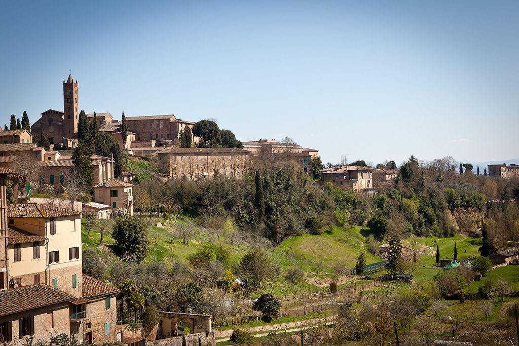 siena italy8 Siena Trip   Beauty of Tuscany