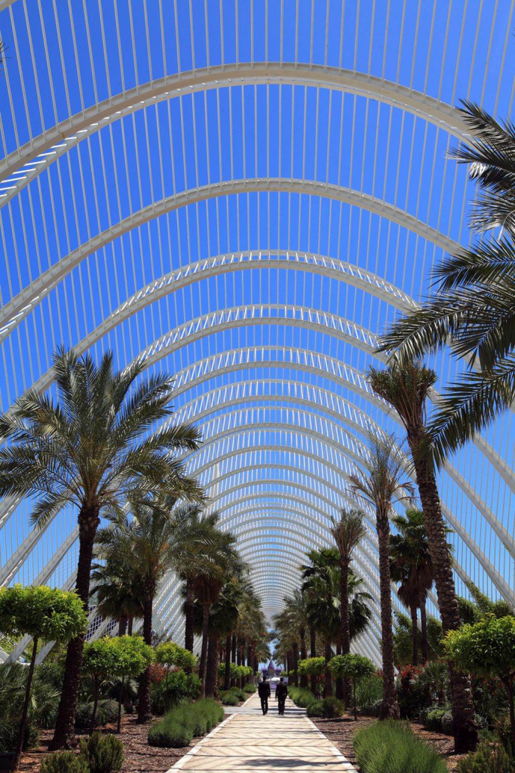 umbracle17 The Umbracle in Valencia by Santiago Calatrava
