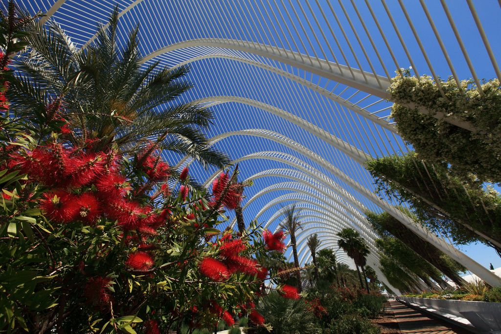 umbracle4 The Umbracle in Valencia by Santiago Calatrava