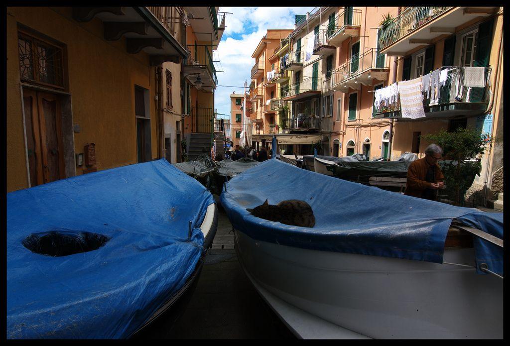 manarola6 Urban Jewel   Manarola in Cinque Terre, Italy