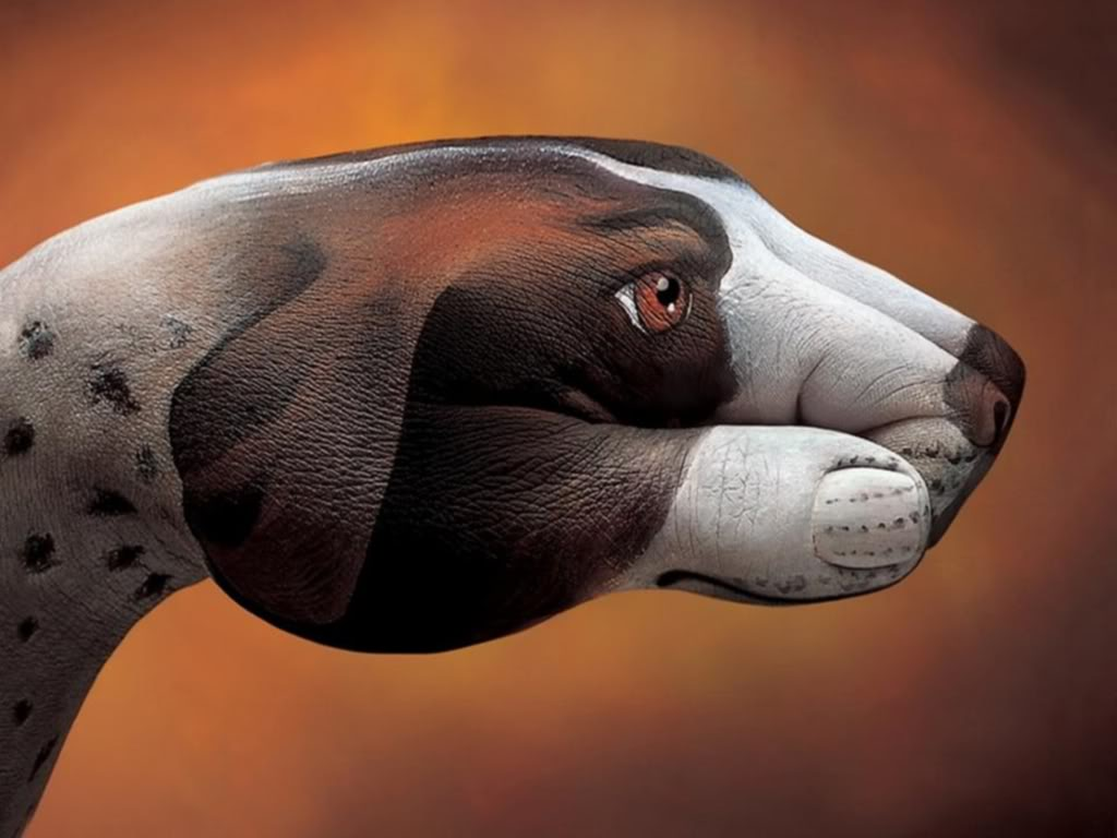 bodypainting1 Best Animal Hands Bodypainting