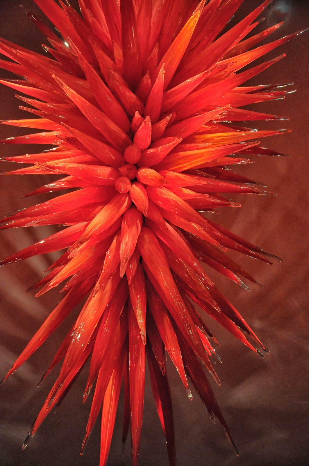 chihuly3 Chihuly Collection in St. Petersburg