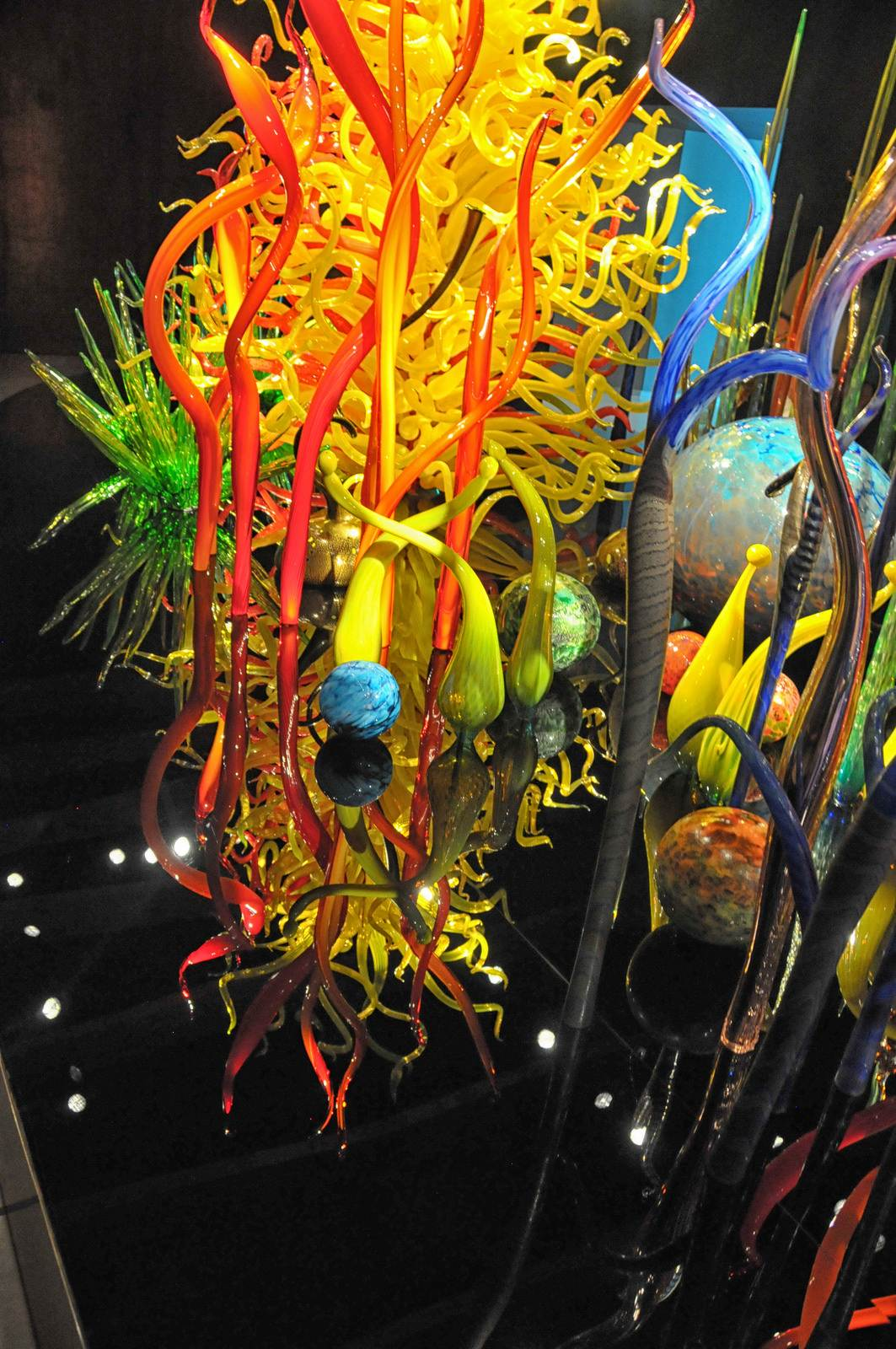 chihuly5 Chihuly Collection in St. Petersburg