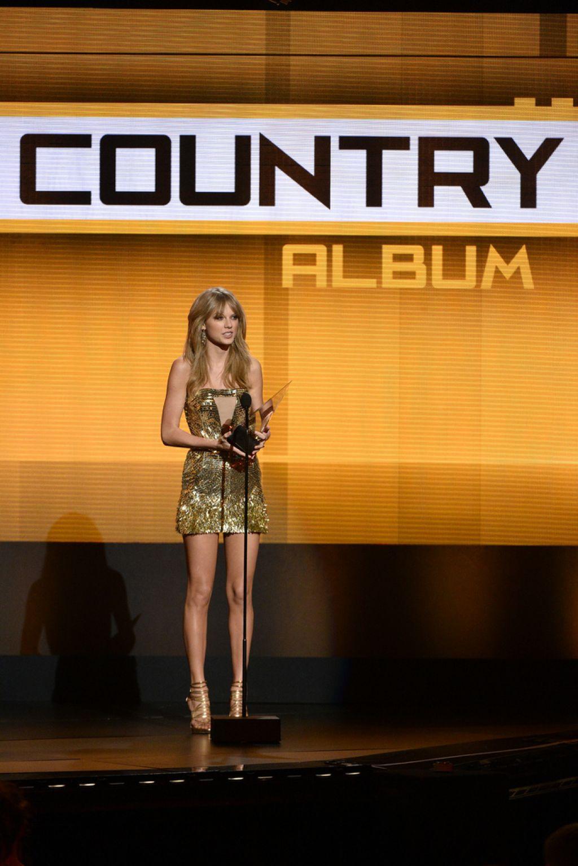 american music awards9 American Music Awards 2013 Winners