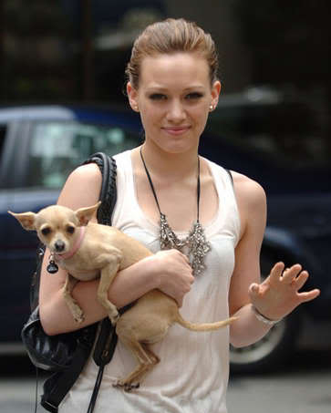 celebrity dog Female Celebrities and Their Dogs