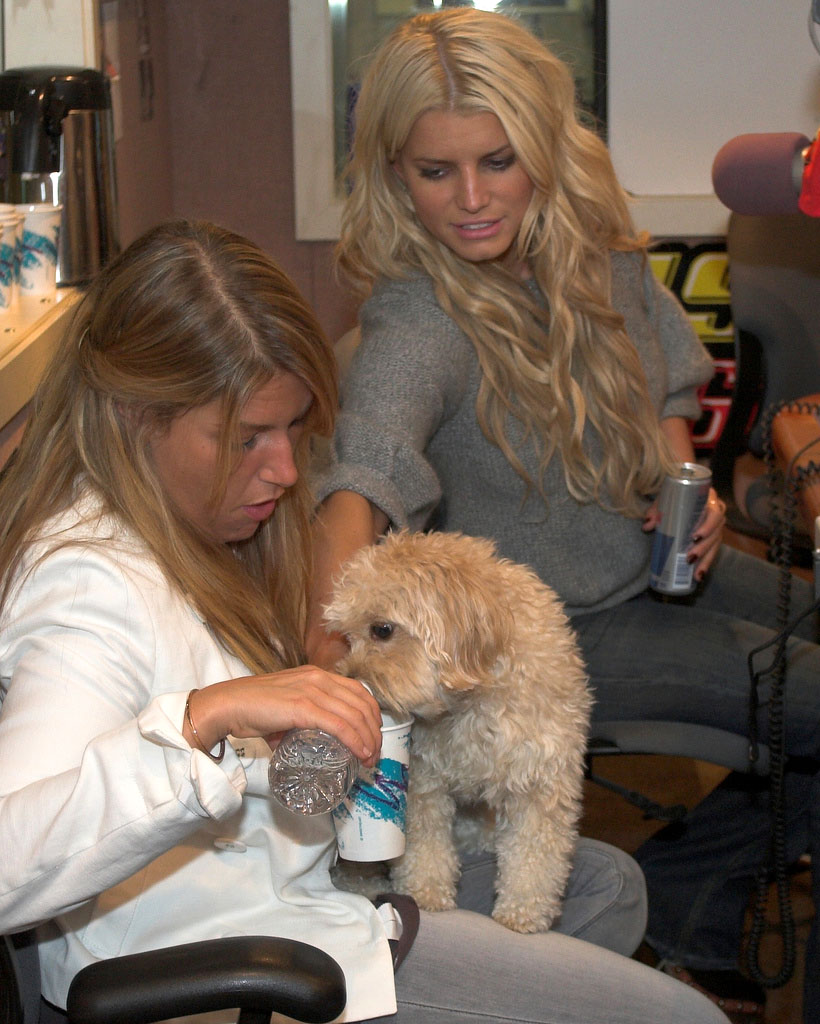 celebrity dog7 Female Celebrities and Their Dogs