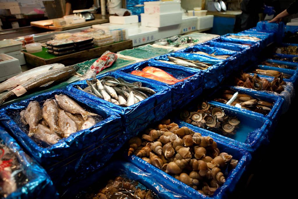 tsukiji market3 Biggest Wholesale Fish and Seafood Market