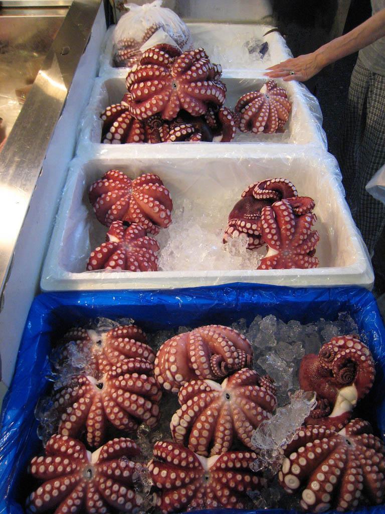 tsukiji market8 Biggest Wholesale Fish and Seafood Market