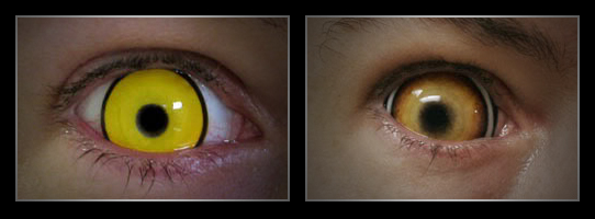 coloured contact lenses10 Fresh Look With Coloured Contact Lenses