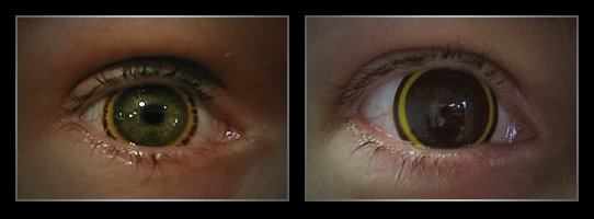 coloured contact lenses7 Fresh Look With Coloured Contact Lenses