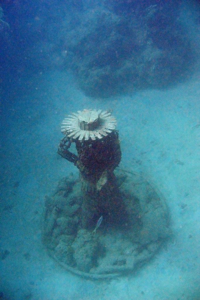 underwater sculpture4 Amazing Underwater Sculpture Park at Moliniere Bay, Grenada