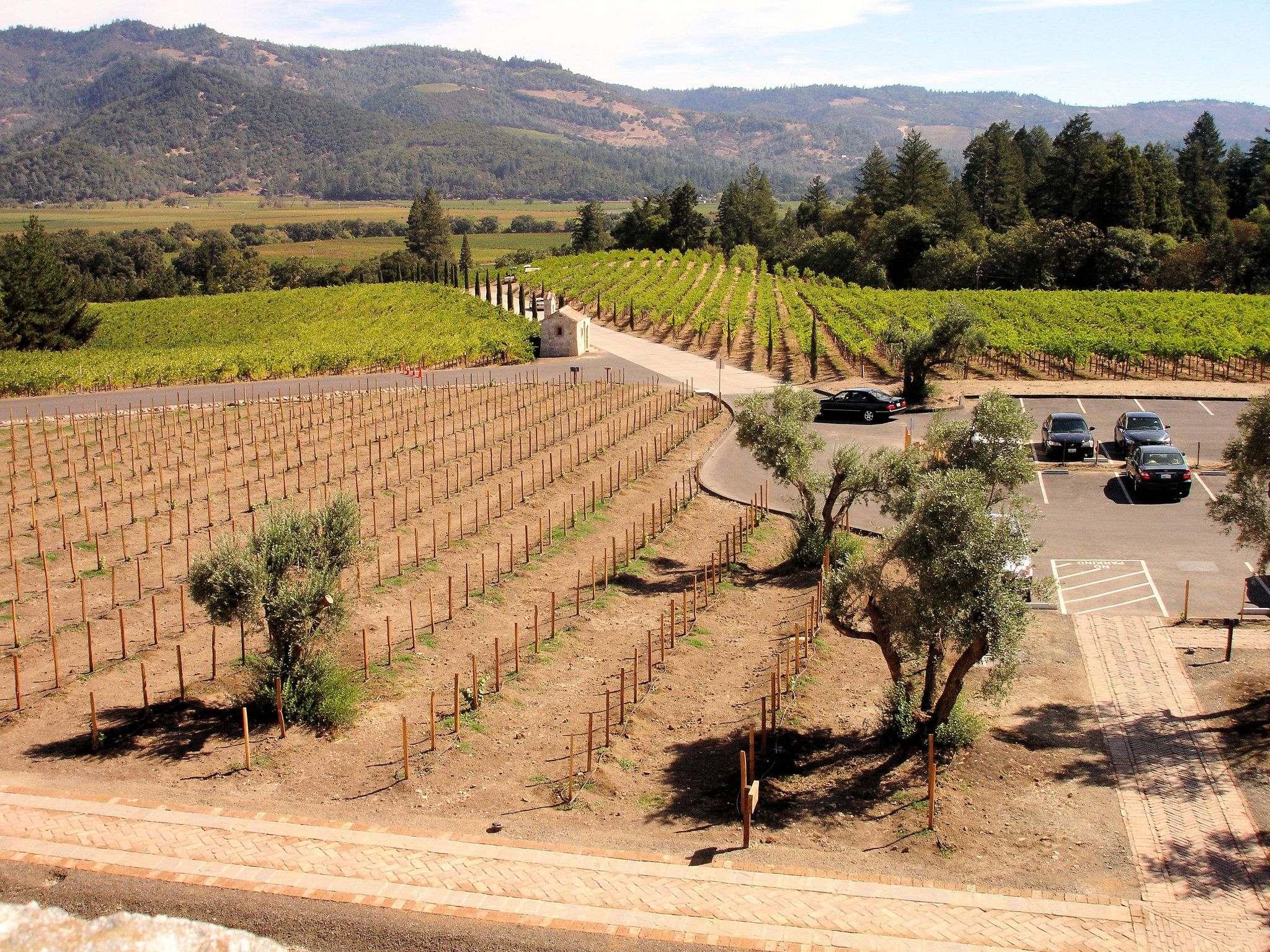 castello di amorosa12 Castello di Amorosa Winery in Napa Valley, California