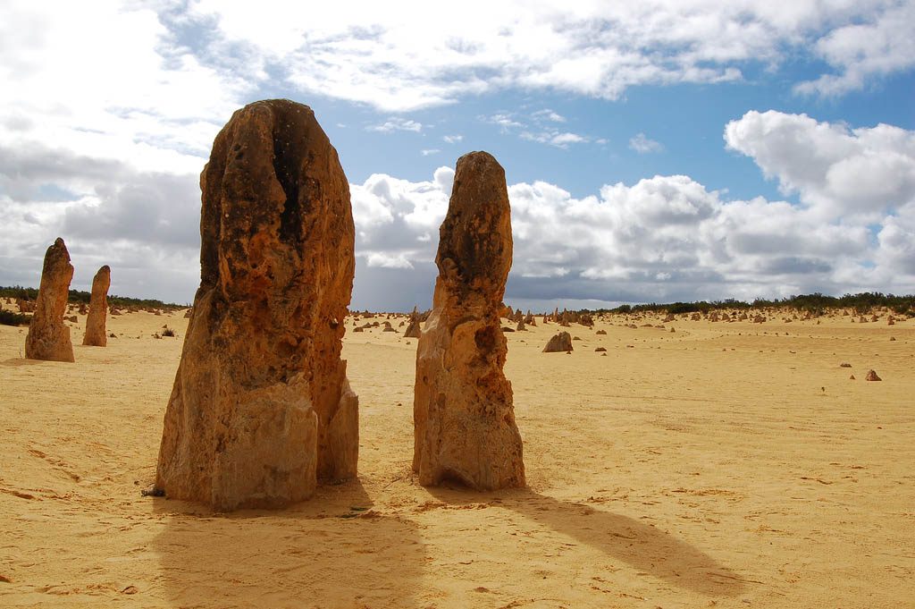 pinnacles1 The Pinnacles, Nambung National Park   Things to Do in Western Australia
