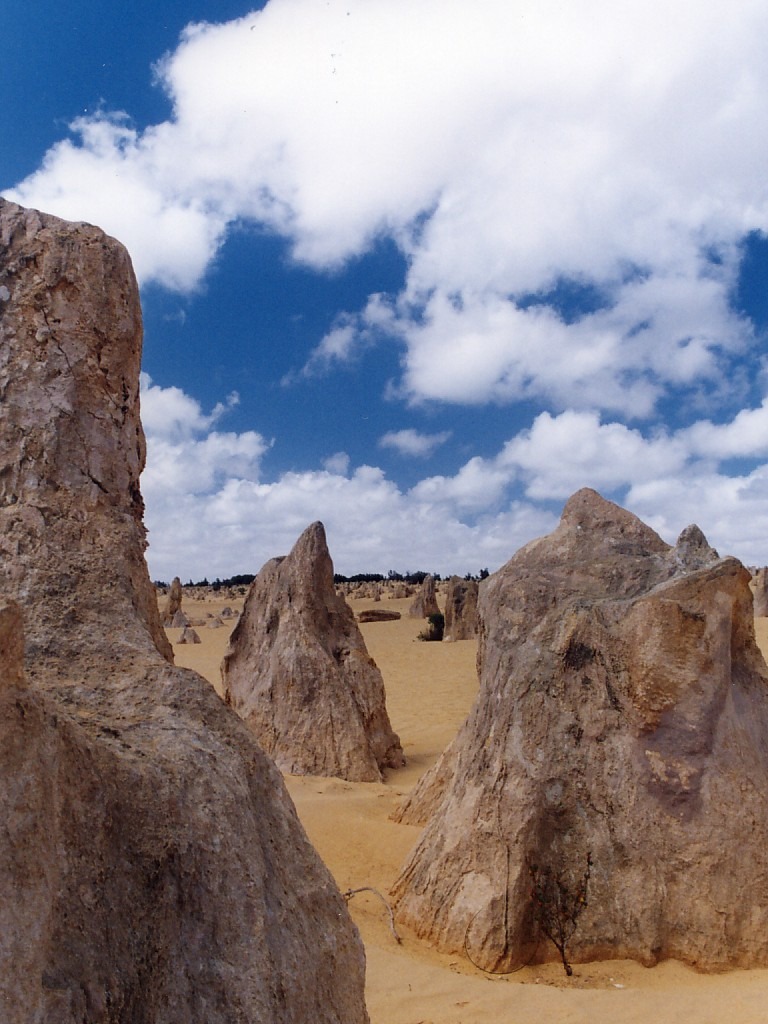 pinnacles6 The Pinnacles, Nambung National Park   Things to Do in Western Australia