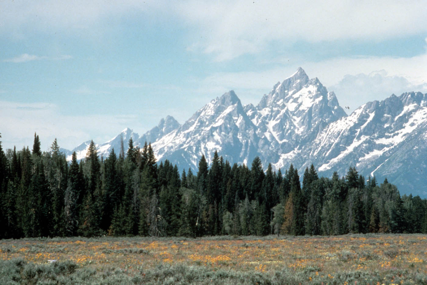grand teton national park2 Spectacular Grand Teton National Park