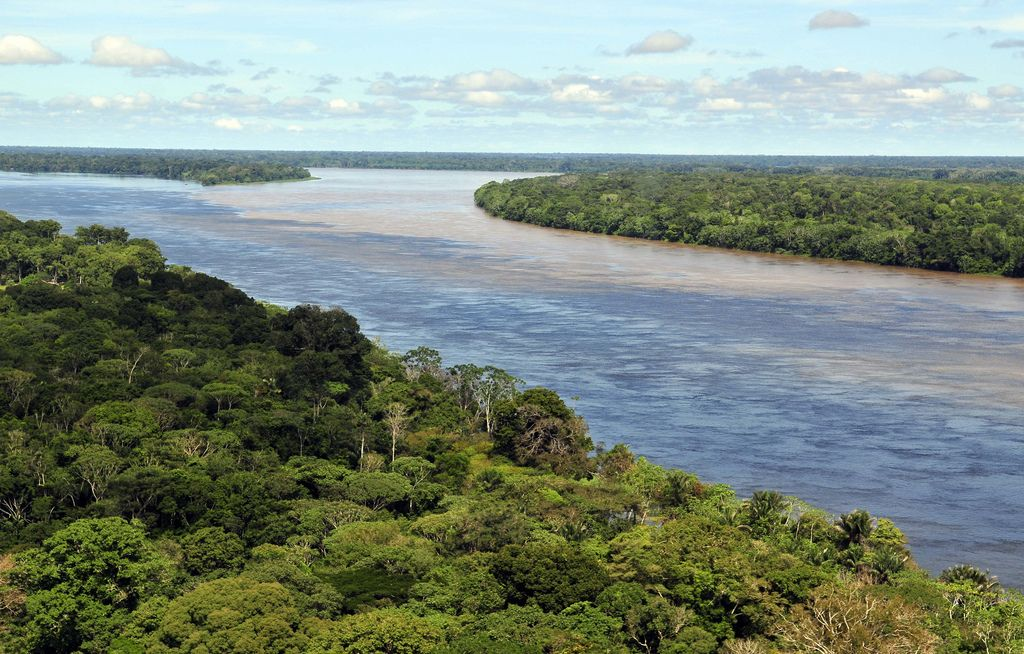 amazon rainforest Top Facts about Amazon Rainforest