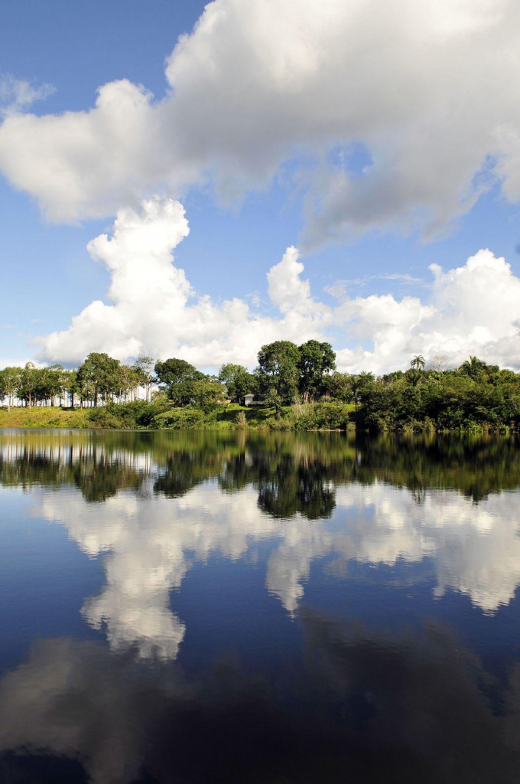 amazon rainforest11 Top Facts about Amazon Rainforest