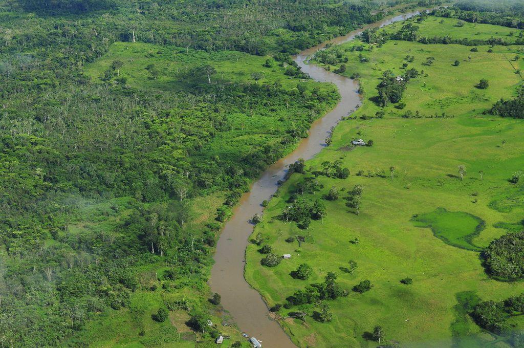 amazon rainforest3 Top Facts about Amazon Rainforest