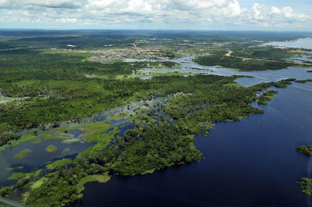 amazon rainforest5 Top Facts about Amazon Rainforest