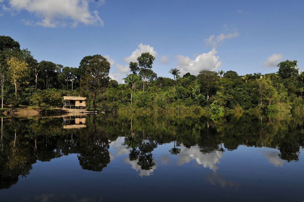 amazon rainforest7 Top Facts about Amazon Rainforest