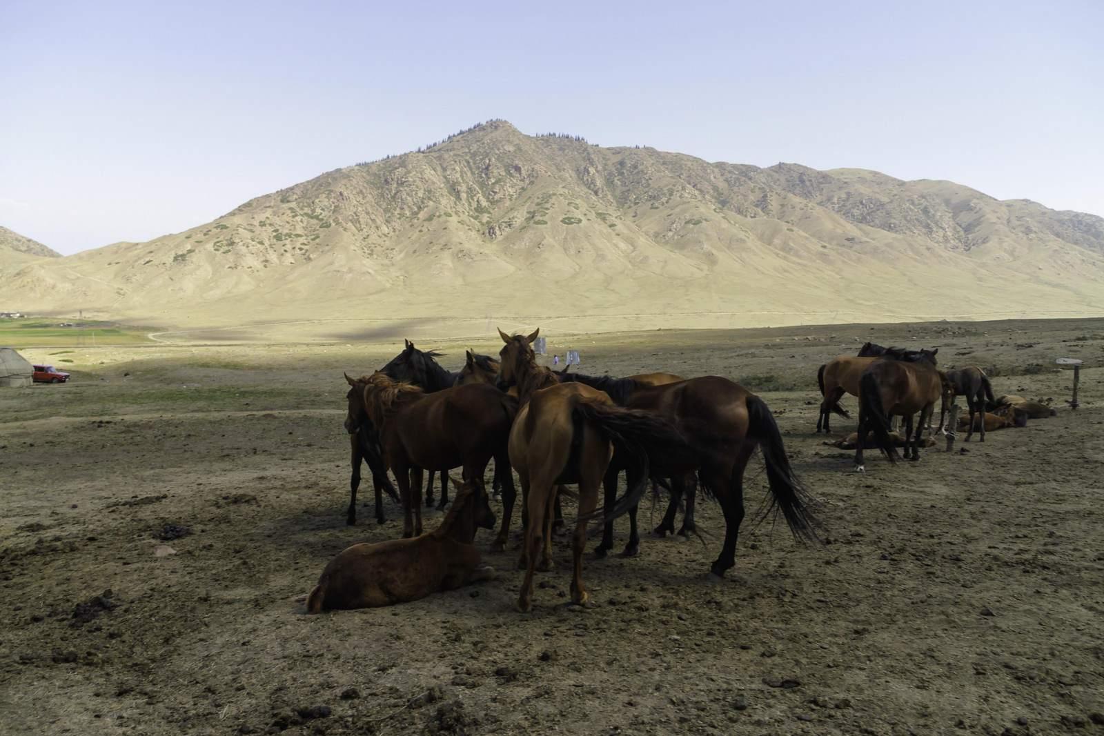 kyrgyzstan9 Visit Kyrgyzstan   Climbing Tastar Ata and Camping Issyk Kul lake